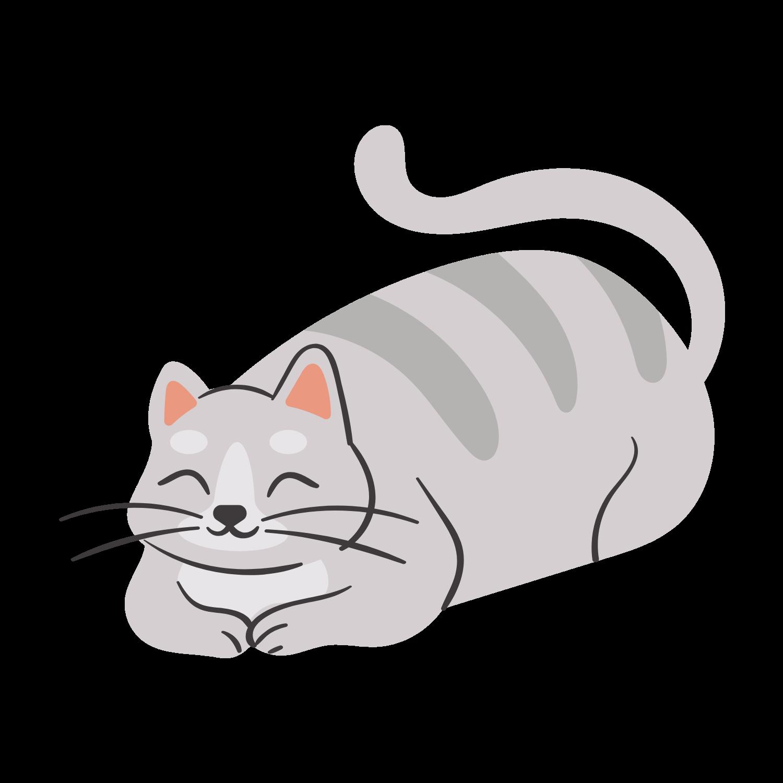 cat friendly Animara